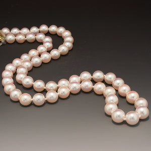 14K White Gold High Quality Akoya Pearl Necklace