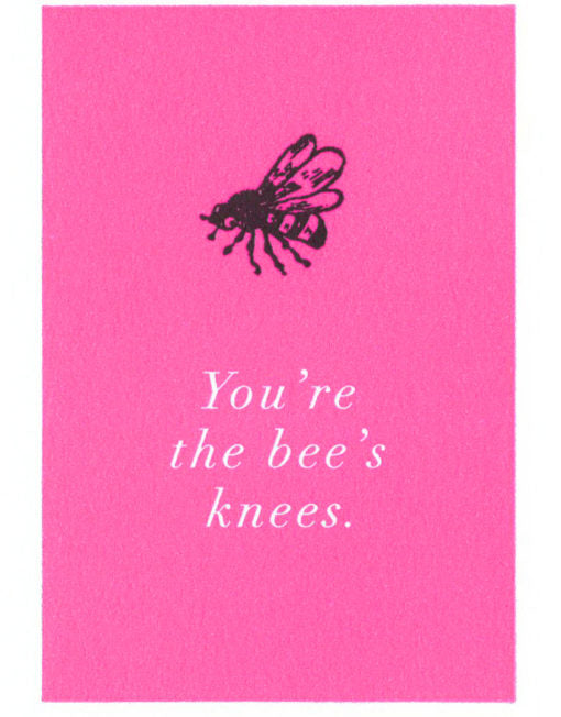 Pack of 6 Notelets - You're the Bees Knees