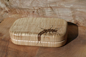 "4x6"" Tiger maple Fly box with compartments and rippled foam"