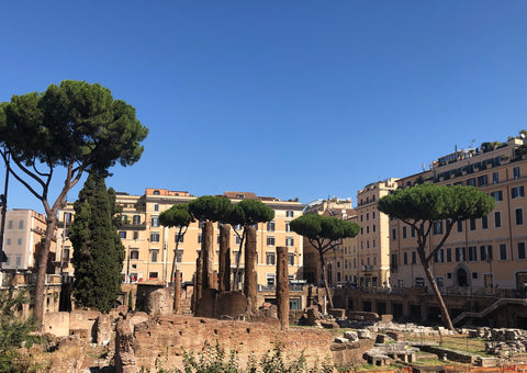 We did get out to visit some sites, like this amazing piazza ...