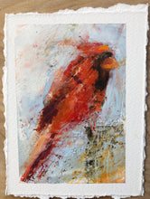 Load image into Gallery viewer, Amy Sullivan - Cardinal