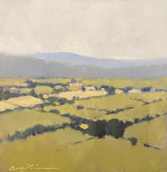 Sherrie Russ Levine - Sweeping Luberon Views