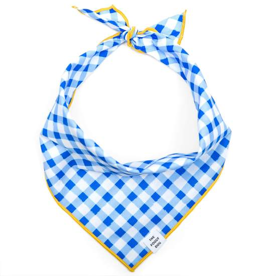 The Foggy Dog Blue GIngham Bandana
