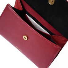 Load image into Gallery viewer, Dany Mini Bag in Cherry