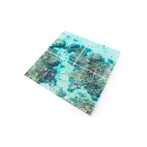 Reef Coaster Set