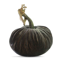 Load image into Gallery viewer, Smokey Topaz Plush Pumpkin
