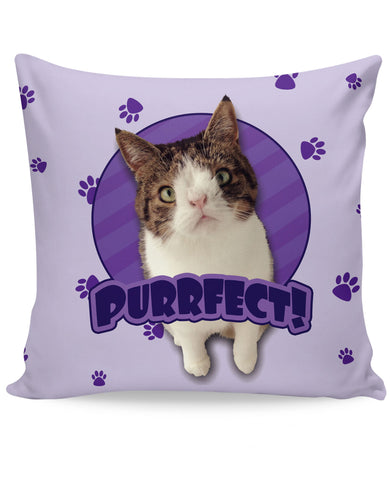 PURRfect Purple Couch Pillow