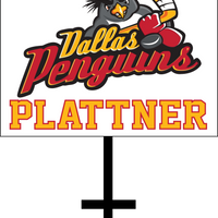 DALLAS PENGUINS