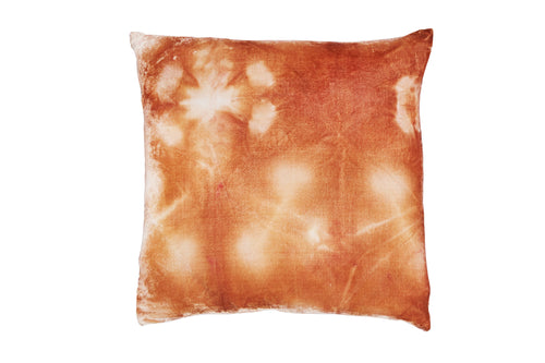 Desert Velvet Throw Pillow