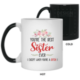 Best Christmas Gift For The Best Sister Ever - christmas 2019