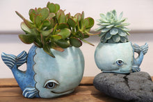 Load image into Gallery viewer, Baby Whale Planter