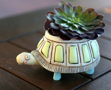 Load image into Gallery viewer, Baby Turtle Planter