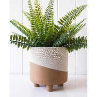 Load image into Gallery viewer, Footed Zazu Planter 15x16cm
