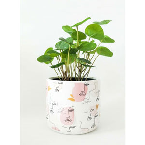 Linear Face Planter Pink Small 15cm