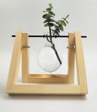 Load image into Gallery viewer, Single Propogation Stand - 14x16cm