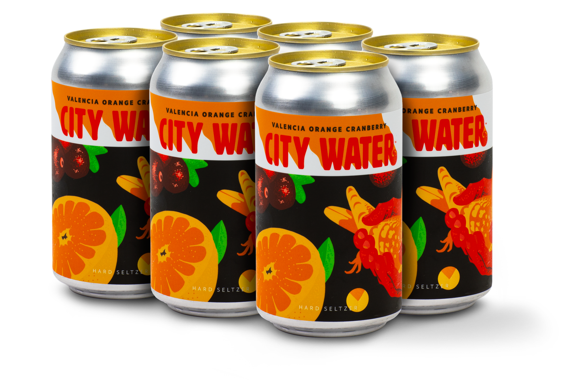 City Water Valencia Orange Cranberry 6-pack