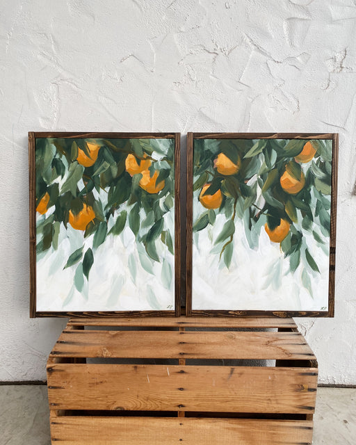 Oranges all Around (set of two)