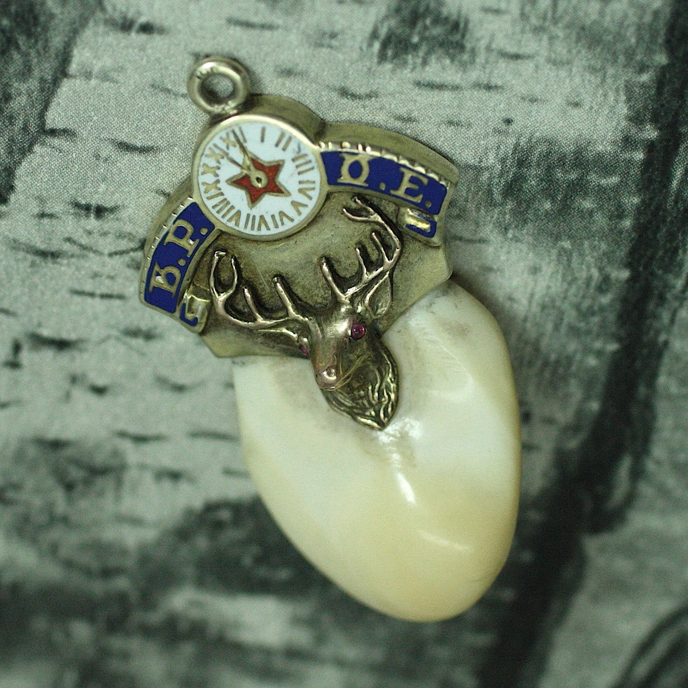 Circa 1900 14K Elks Club Tooth Fob