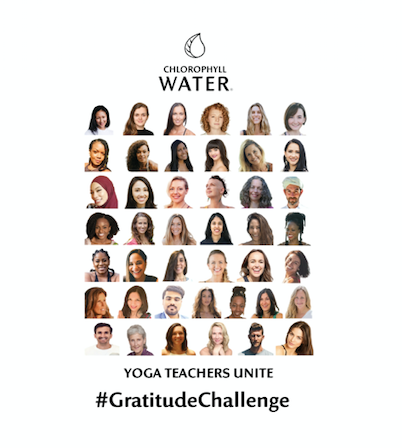 #GratitudeChallenge What are you grateful for? Yoga Teachers Unite by Chlorophyll Water