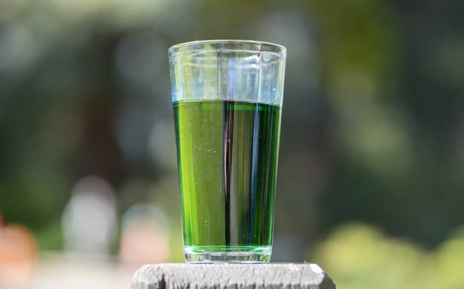 Is Chlorophyll Water Worth The Hype? [The Daily Californian]