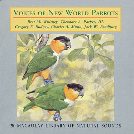 Voices of New World Parrots