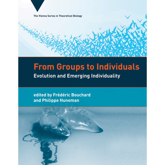 From Groups to Individuals: Evolution and Emerging Individuality