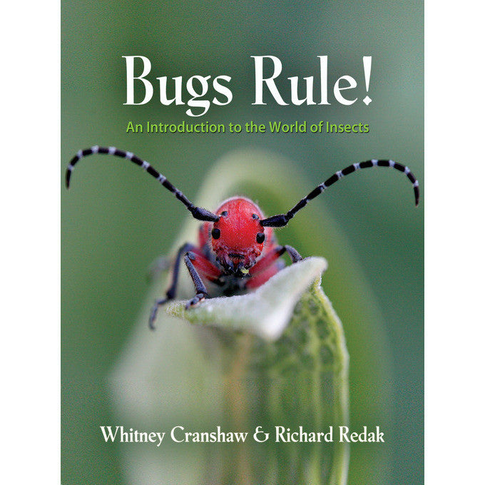 Bugs Rule!: An Introduction to the World of Insects