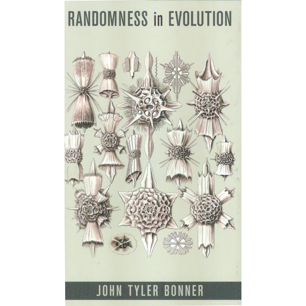Randomness in Evolution