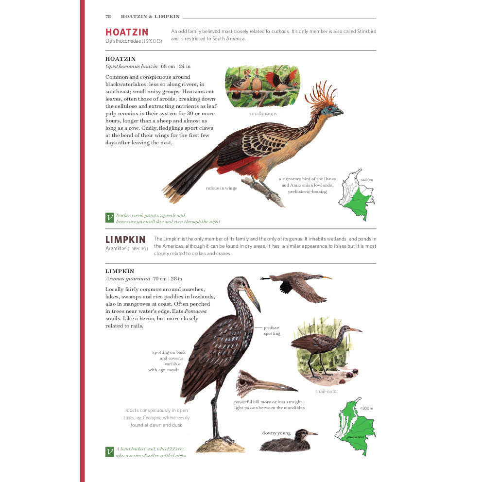 Field guide to the birds of colombia – 2nd edition |:: Proaves.