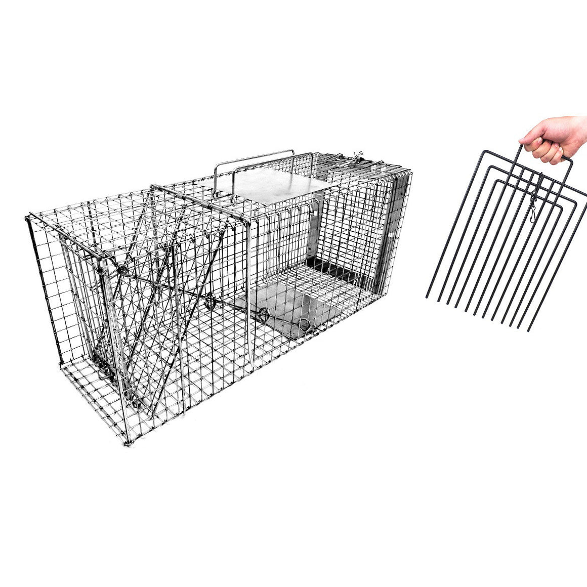 "30"" Cat Trap w/ Trap Divider"