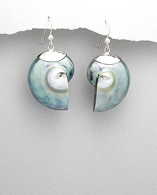 Sterling Silver Grey Nautilus Sea Shell Earrings