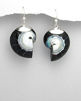 Sterling Silver Black Nautilus Sea Shell Earrings