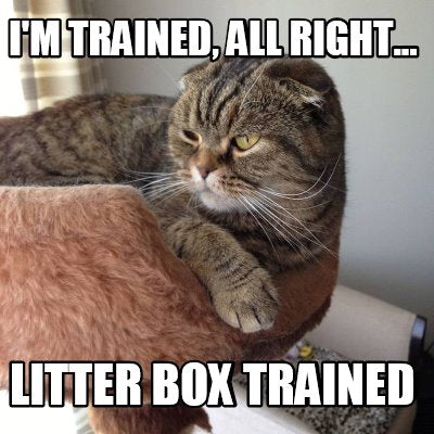 I'm litter box trained