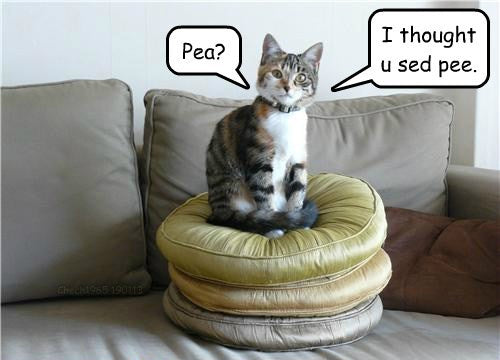 I thought you said pee, not pea.