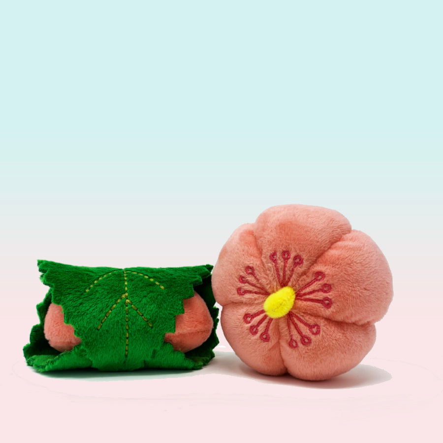 Sakura Set, 2pc Wagashi with Organic Catnip
