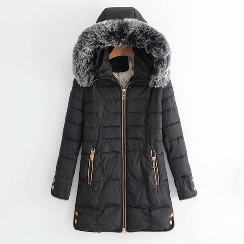 Women Solid Fur Hooded Winter Coat (4369999790220)