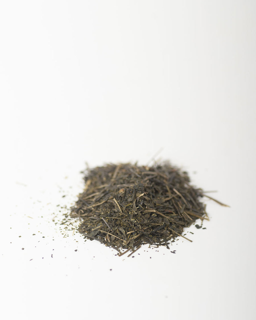 Sencha Hicki 1st Flush - Green Tea
