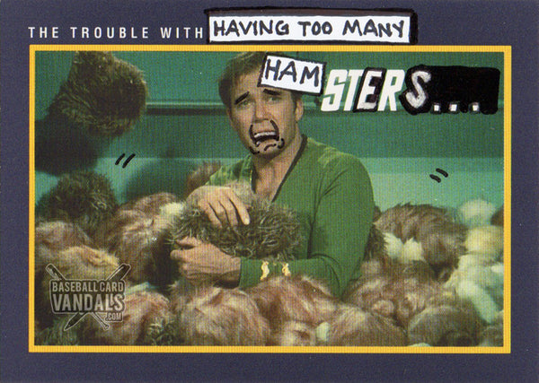 The Trouble With Having Too Many Hamsters...