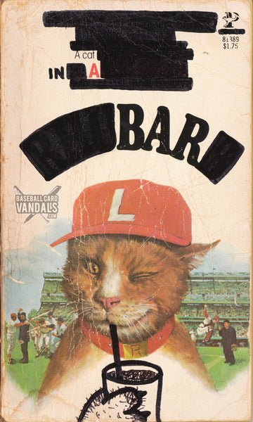 A Cat in a Bar
