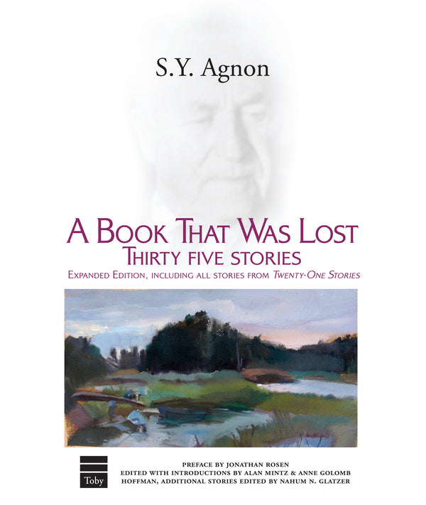 A Book That Was Lost: 35 Stories