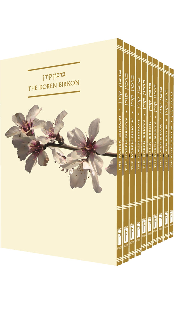The Koren Birkon - package of 10