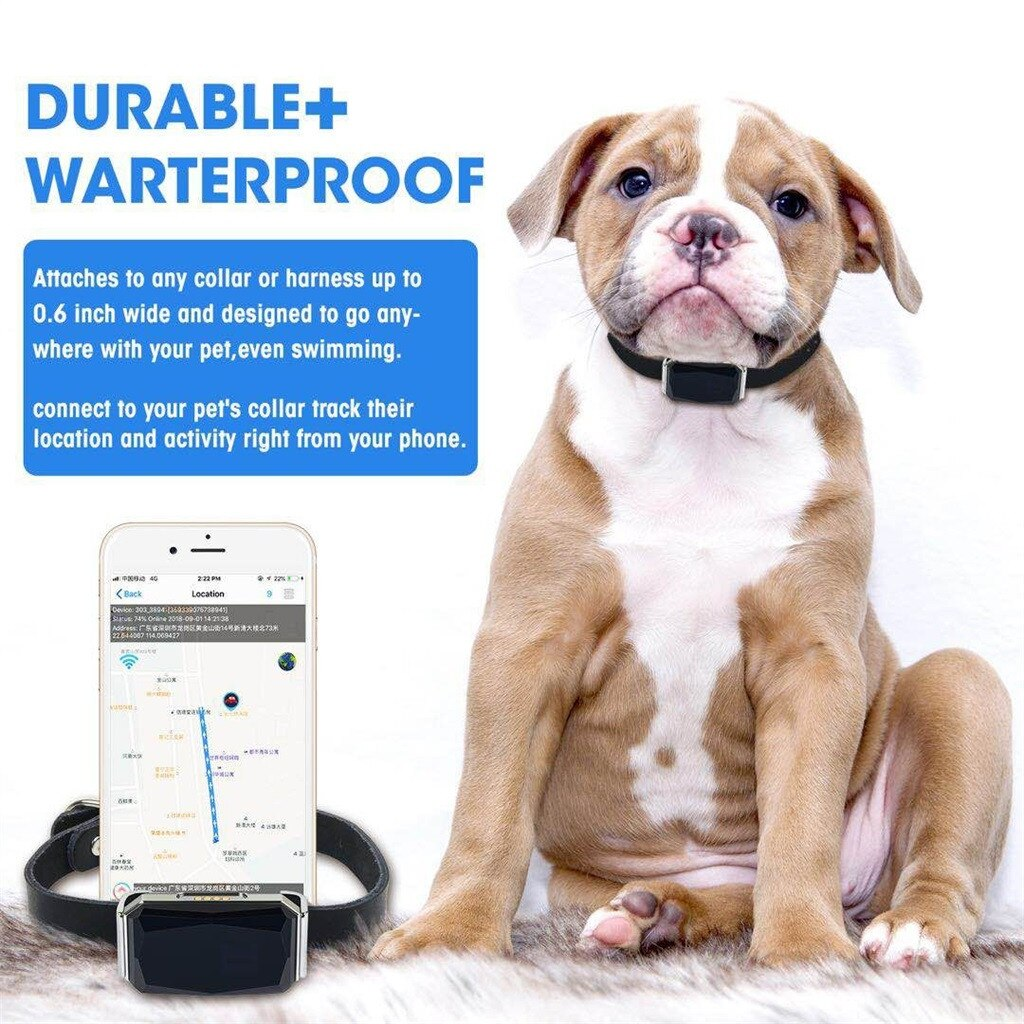 Dog GPS Tracker Cool Gemstone Ip67 Waterproof Pet