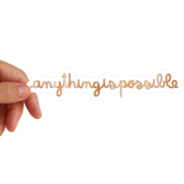 Anything Is Possible Stickers