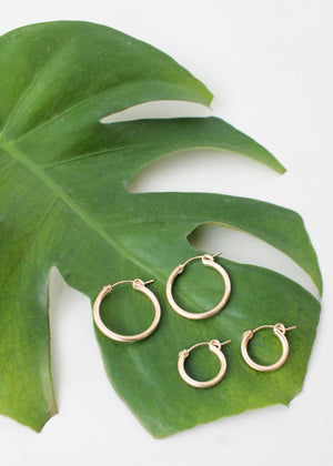 Everyday Gold Filled Hoops