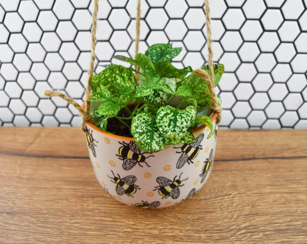 Bee Hanging Planter - The Manchester Shop