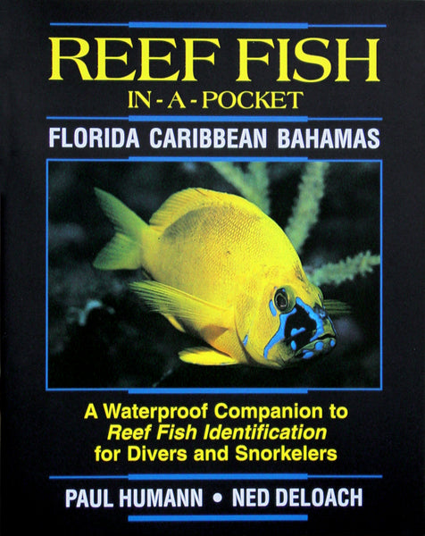 Reef Fish Waterproof Mini Book - Puerto Rico, Florida, Caribbean and Bahamas
