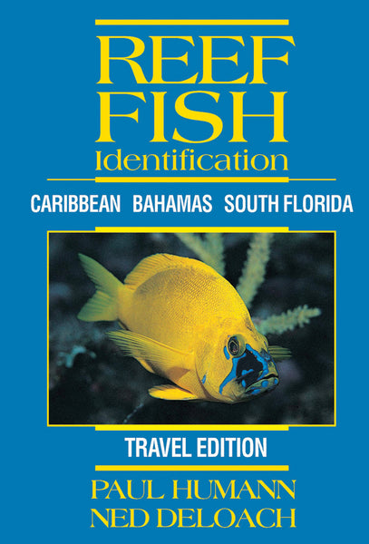 Reef Fish Identification Travel Edition - Puerto Rico, Florida, Caribbean, Bahamas