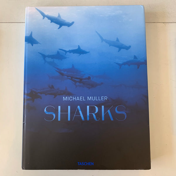 Sharks by Michael Muller