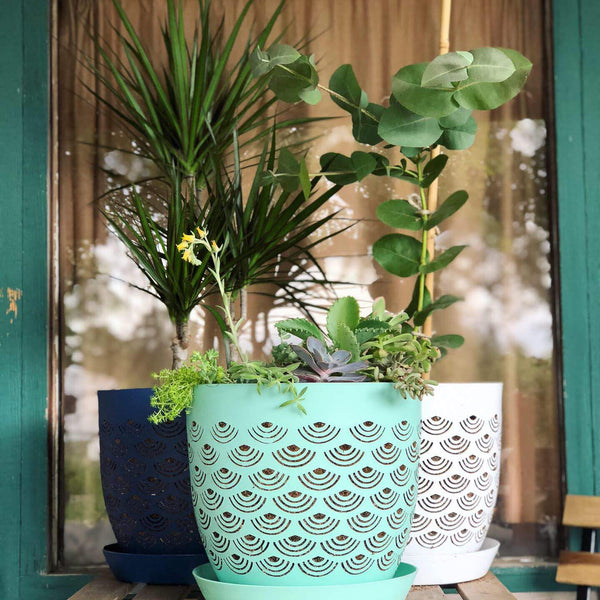 RediRoot BREATHE planter