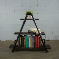 Rustic ladder shelf with house plant and books. Made with Paulownia wood and aluminum pipes.